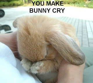 http://www.esreality.com/files/placeimages/2007/58312-bunny%20sad-thumb.jpg